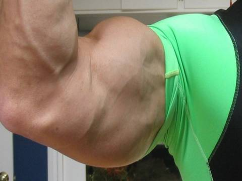 Huge Arms Don t forget triceps Do dips