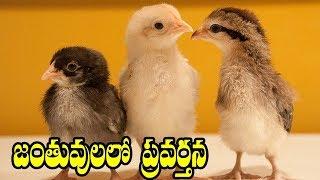 State Board Syllabus | 9th Class Biology | 9th Class Biology Telugu Medium |- Comprint Multimedia