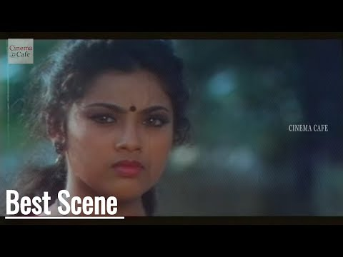Villains Remove Meena Saree || Punya Bhoomi Naa Desam Movie || Mohanbabu, Meena