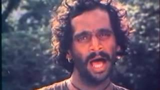 Jambhul pikalya zadakhali jait re jait