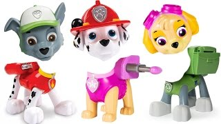 Best Learning Colors Video for Children - Paw Patrol Pus Have WRONG HEADS