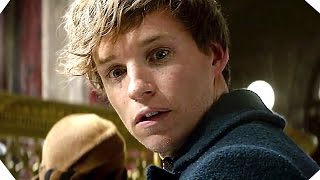 Fantastic Beasts and Where to Find Them TRAILER # 2 (Harry Potter Spinoff)