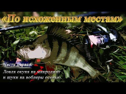 микроджиг на окуня осенью видео