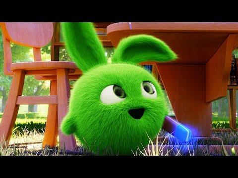 Xxx Mp4 Sunny Bunnies – BORRADOR MÁGICO Dibujos Animados Para Niños WildBrain En Español 3gp Sex