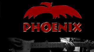 Phoenx - Fata verde guitar cover