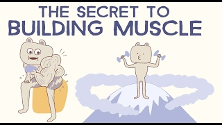 Tricks To Help Your Body Grow Muscle