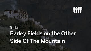 BARLEY FIELDS ON THE OTHER SIDE OF THE MOUNTAIN | TIFF Next Wave 2018