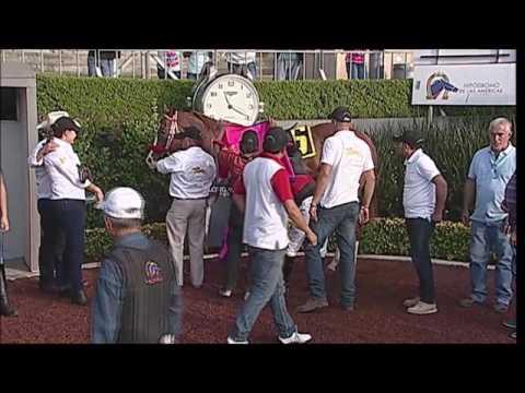 Xxx Mp4 XXXV Derby Mexicano 3gp Sex