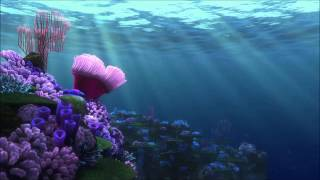 Finding Nemo-Field Trip (Extended)