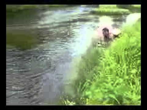 ловля жаками весной видео