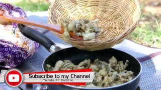Wow!!! Babe Girl Cooking Fried Frog in My Village - Cambodian Traditional Food