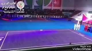 بطولة العالم 14 للووشو كونغ فو بروسيا 2017