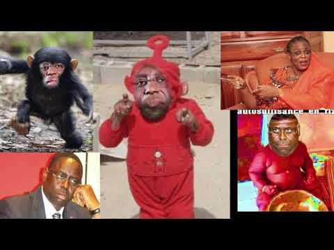 Xxx Mp4 Macky Sall Mariem Faye Sall Séne Thiotou Ndeye Sénégal 666 N 5 3gp Sex