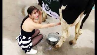 चीन की चालू दूधवाली | China Ki Doodhwali