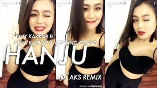 HANJU (DJ AKS REMIX) - Tony Kakkar ft Neha Kakkar, Meiyang Chang
