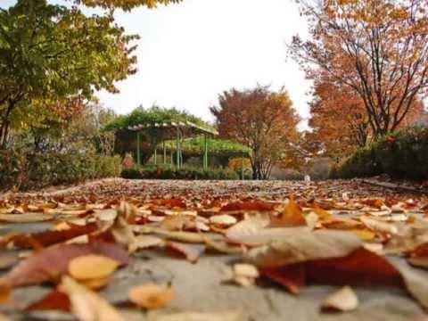 Autumn In My Heart Ost Endless Love Korean Drama