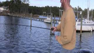 Trout Fishing with DOA Shrimp