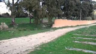 Windstorm Softair Mazara vs Green Devil.3gp
