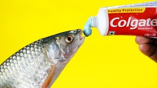 15 GENIUS LIFE HACKS THAT WILL IMPROVE YOUR DAILY ACTIVITIES!