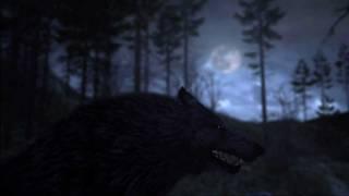 Cabela's Dangerous Hunts 2011 - Official Activision Teaser