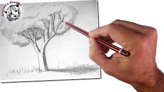 Cómo Enseñar a Dibujar a Niños: Un Árbol Realista: Técnicas de Dibujo Fácil