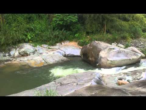 Lluvia Truenos y Relámpagos Sonidos de la naturaleza para dormir