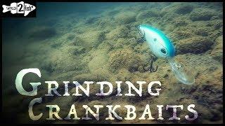 Deep Diving Crankbait Deflections | Underwater View