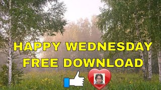 Happy Wednesday free video download