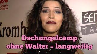 Micaela findet Walter kurios, aber unterhaltsam  |Dschungelcamp
