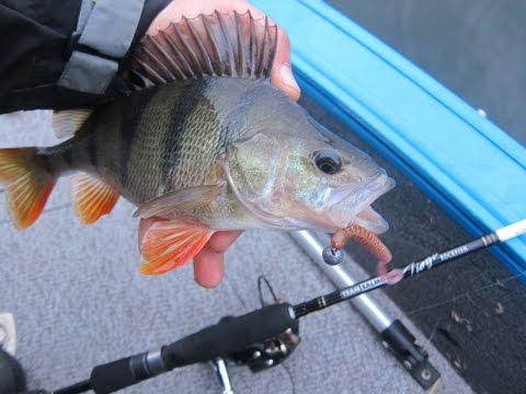 насадки для рыбалки в марте