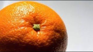عبيد العوني    البرتقال مجاني  مزرعة سعد الخثلان  برتقال الصحراء