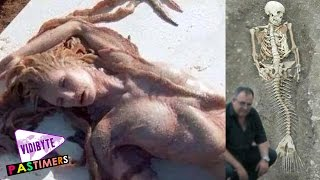 A Real Life New Mermaid Found On The Beaches Of Hawaii and Egypt