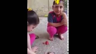بنات صغار يبكون على عصفور ميت