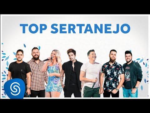 TOP SERTANEJO 2020 As Melhores do ano