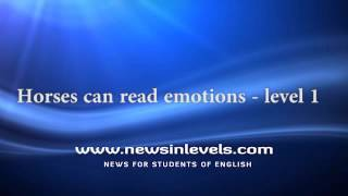 Horses can read emotions - level 1