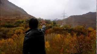 Shafiq Mureed -