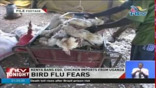 Bird flu fears as Kenya bans egg, chicken imports from Uganda