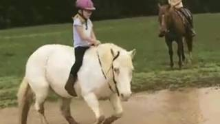 Top Funny Videos| Funny Videos Of People Falling