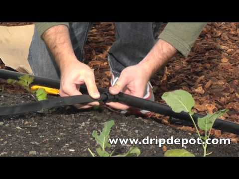 How to Setup a Drip Irrigation System for a Large Vegetable Garden