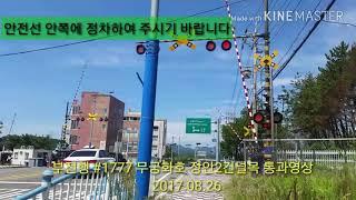 동해선 부전행 무궁화호 #1777열차 장안2건널목 통과영상(2017.08.26)