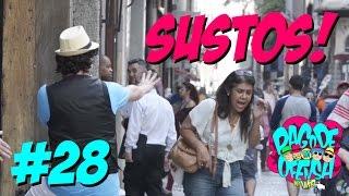 Pagode da Ofensa na Web #28 - Dando Sustos!