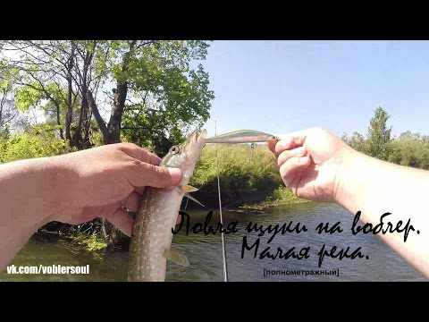 ловля щуки твичингом на малых водоемах
