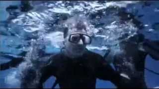 Jaws 5 Official HD Trailer (Summer 2014)