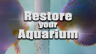 HOW TO: Restore an aquarium - remove water stains TUTORIAL