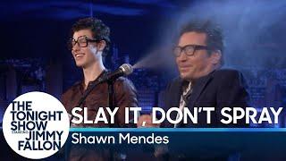 Shawn Mendes | Slay It, Don't Spray It