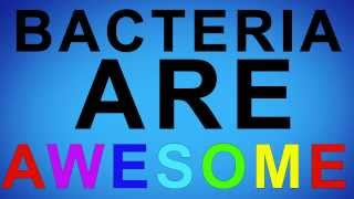 Bacteria Are Awesome!