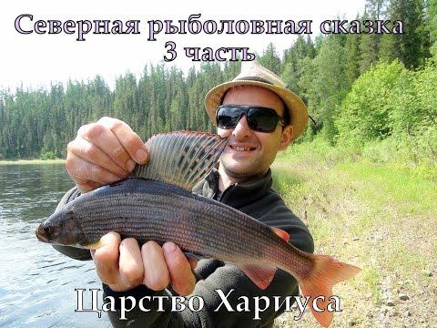 видео рыбалка таймень хариус