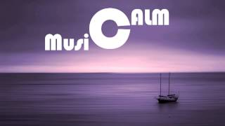 Best Beautiful Relaxing Slow & calm song Halving The Compass on 0.50x speed