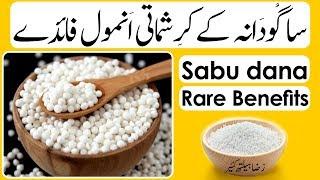 Sabu Dana Ke Karishmati Anmol Fawaid | ساگودانہ کےکرشماتی انمول فائدے | Sabudana Very Rare Benefits