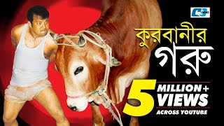 Korbanir Goru | Bangla Natok | Full HD | Siddikur Rahman | Tanjika